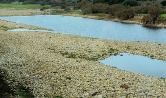 Crisi idrica: l'analisi e le prime soluzioni