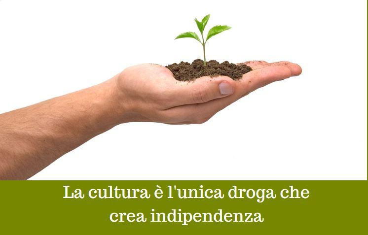 Il fisco italiano: irrazionale e ingiusto