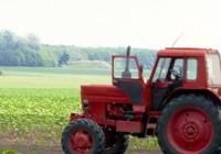Lettera aperta del Consigliere Piermario Manca all'Assessore dell'Agricoltura