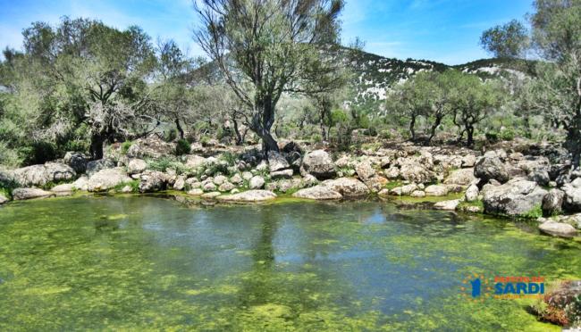 Difendiamo Golgo come patrimonio della Sardegna anche a dispetto di Sovrintendenza e Corpo Forestale