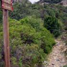 L'Oasi di Monte Arcosu