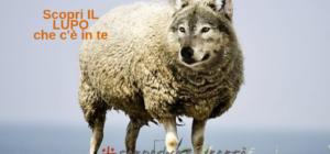 Sassari e il Piano Zero: la fatica, la ferocia e la furbizia