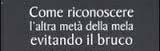Il Governo italiano è il bruco