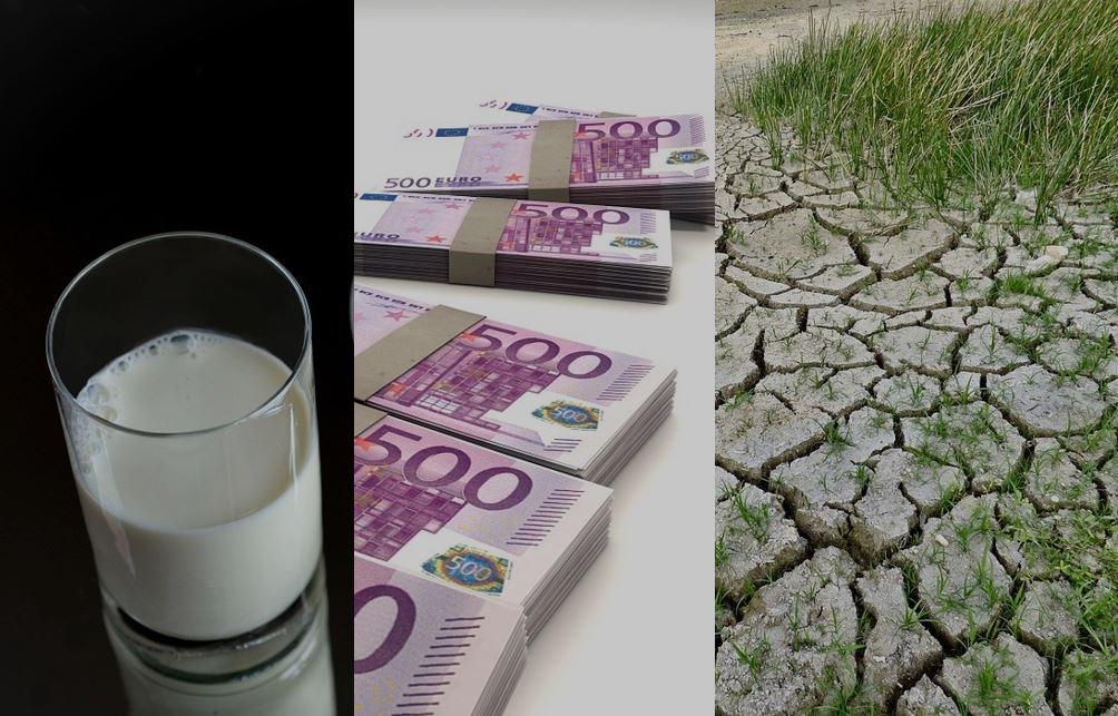 Come creare ricchezza col latte